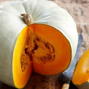 Queensland Blue Pumpkin